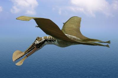 Tropeognathus Mesembrinus, a Large Pterosaur from the Late Cretaceous Period--Art Print