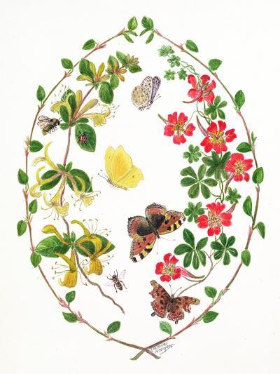 Tropeolium and Lonicera-Ursula Hodgson-Giclee Print