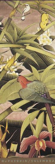 Tropica II-Kevin McPherrin-Art Print