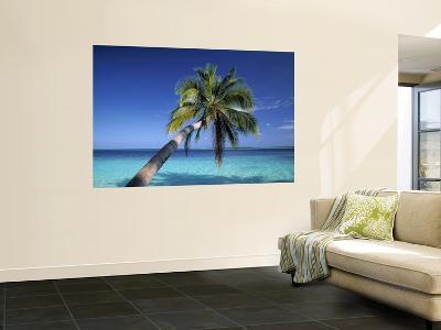 Tropical Beach at Maldives-Jon Arnold-Giant Art Print