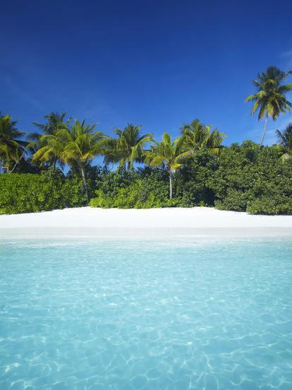 Tropical Beach, Maldives, Indian Ocean, Asia-Sakis Papadopoulos-Photographic Print