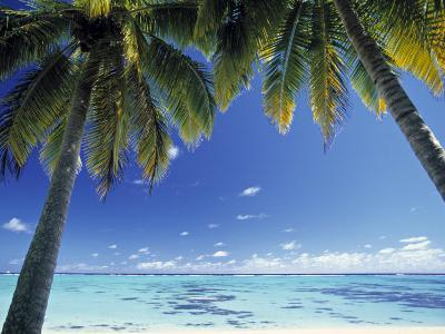 Tropical Beach, North Aitutaki Island, Cook Islands-Peter Adams-Photographic Print