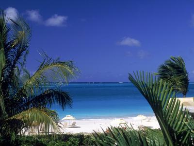 Tropical Beach, Turks and Caicos Islands-Timothy O'Keefe-Photographic Print