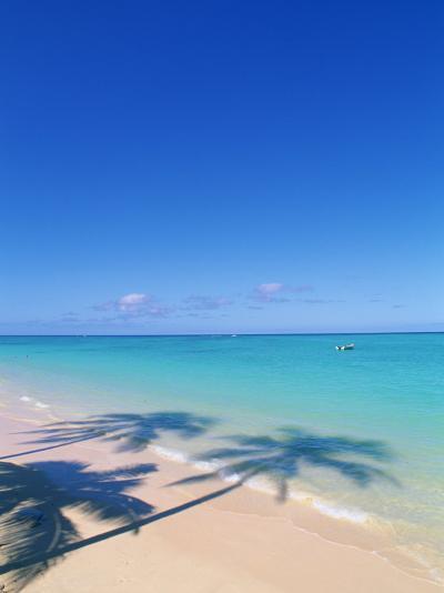 Tropical Beach with palm Tree shadows-Douglas Peebles-Photographic Print