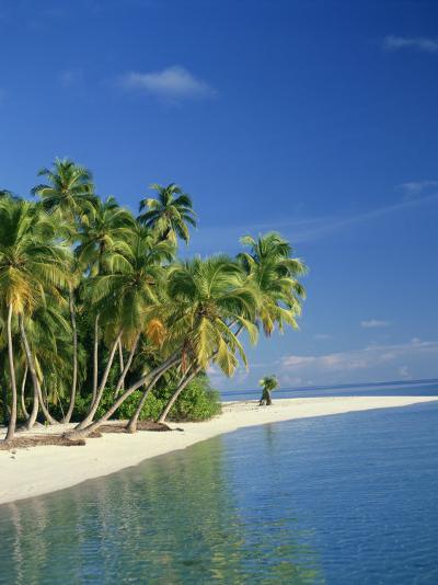 Tropical Beach with Palm Trees at Kudabandos in the Maldive Islands, Indian Ocean-Tovy Adina-Photographic Print