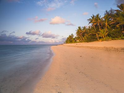 Tropical Beach with Palm Trees at Sunrise, Rarotonga, Cook Islands, South Pacific, Pacific-Matthew Williams-Ellis-Photographic Print