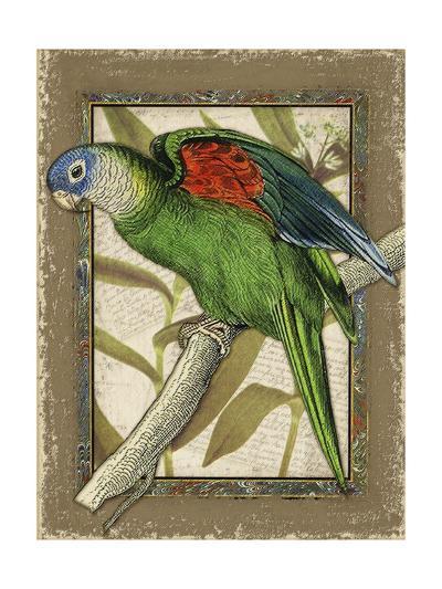 Tropical Bird Composition III-Kate Ward Thacker-Art Print