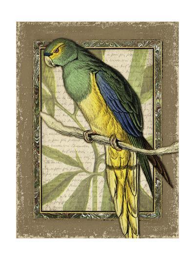 Tropical Bird Composition V-Kate Ward Thacker-Art Print