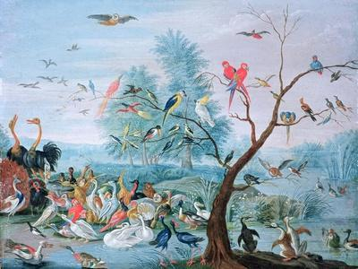 https://imgc.artprintimages.com/img/print/tropical-birds-in-a-landscape_u-l-o24s70.jpg?p=0