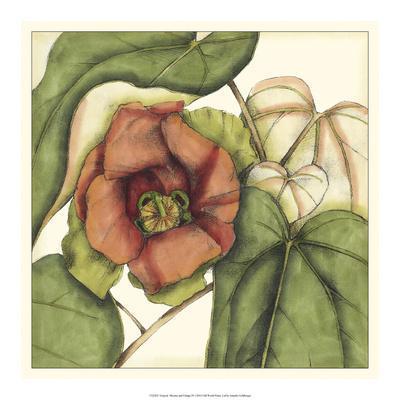 https://imgc.artprintimages.com/img/print/tropical-blooms-and-foliage-iv_u-l-ph99vt0.jpg?p=0