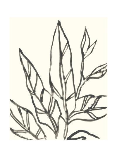 Tropical Contour II-June Erica Vess-Art Print
