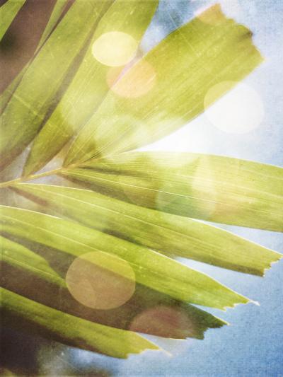 Tropical Daydream I-Emily Robinson-Photographic Print