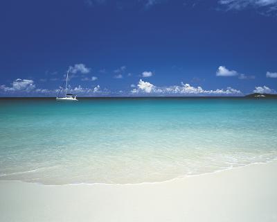 Tropical Dreaming-Chris Simpson-Giclee Print