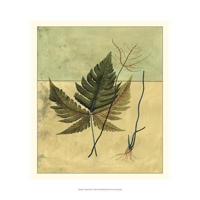 https://imgc.artprintimages.com/img/print/tropical-fern-v_u-l-pxn2910.jpg?p=0
