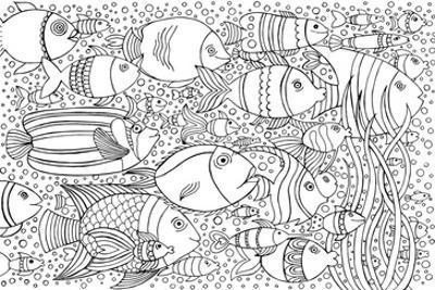 Tropical Fish Coloring Art