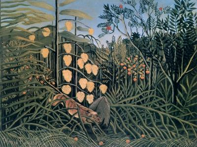 Tropical Forest: Battling Tiger and Buffalo, 1908-Henri Rousseau-Giclee Print