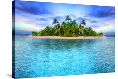 Tropical Island Of Maldives--Stretched Canvas Print