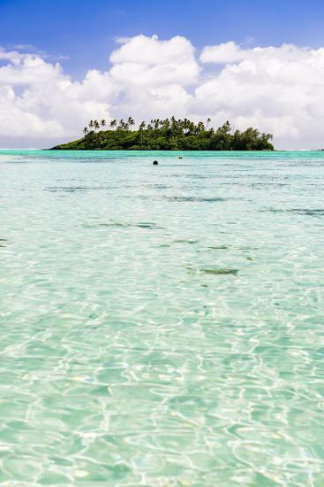 Tropical Island of Motu Taakoka Covered in Palm Trees in Muri Lagoon, Cook Islands, Pacific-Matthew Williams-Ellis-Photographic Print