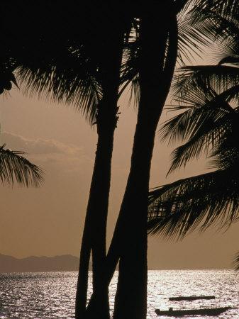 https://imgc.artprintimages.com/img/print/tropical-island-paradise-fiji-pacific_u-l-p3so0r0.jpg?p=0