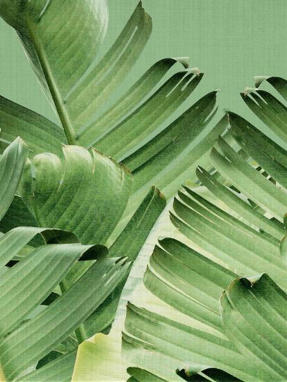 Tropical Leaves 2-LILA X LOLA-Art Print
