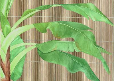 Tropical Leaves I-D^ Patrian-Art Print