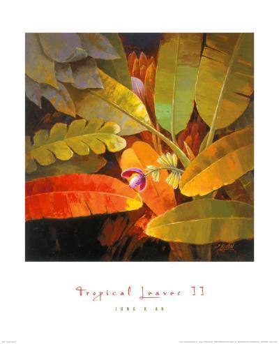 Tropical Leaves II-June K^ An-Art Print