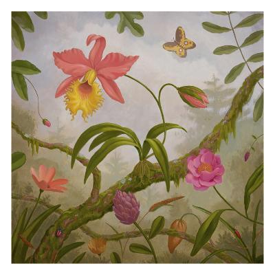 Tropical North-Fred Lisaius-Premium Giclee Print