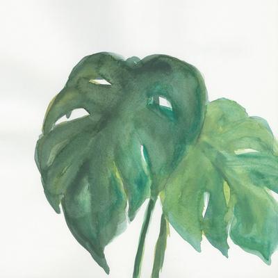 https://imgc.artprintimages.com/img/print/tropical-palm-ii_u-l-q1ay72d0.jpg?p=0