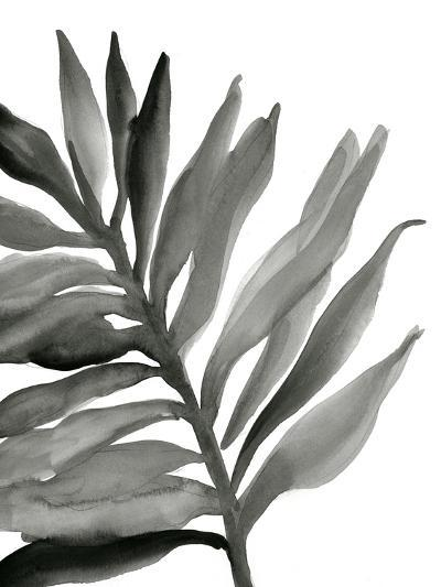 Tropical Palm III BW-Chris Paschke-Art Print