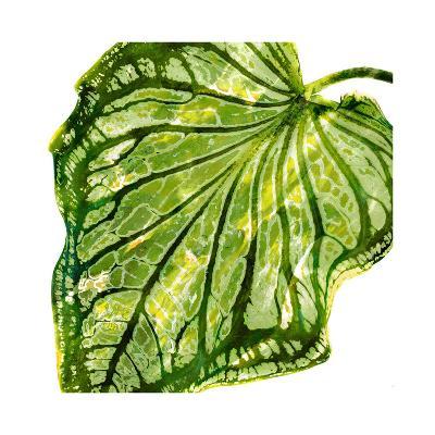 Tropical Palm III-Melonie Miller-Giclee Print