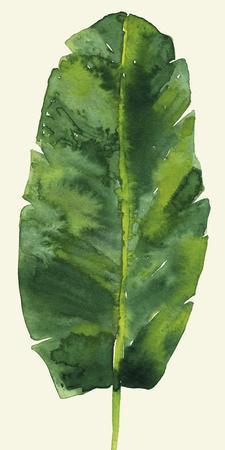 https://imgc.artprintimages.com/img/print/tropical-palm-leaf-iii_u-l-f8d3d90.jpg?p=0