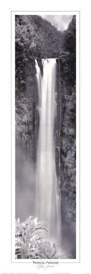 Tropical Paradise-Mike Jones-Art Print