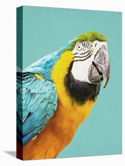 Tropical Parrot-LILA X LOLA-Stretched Canvas Print