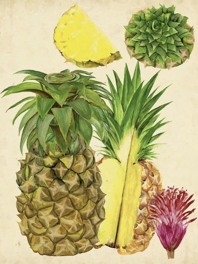 Tropical Pineapple Study I-Melissa Wang-Art Print
