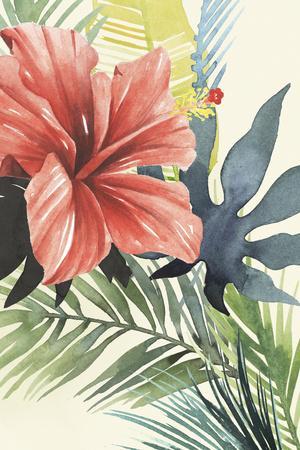 https://imgc.artprintimages.com/img/print/tropical-punch-ii_u-l-q12zrdv0.jpg?p=0