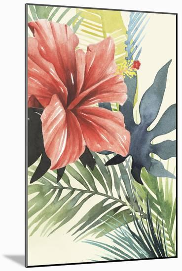 Tropical Punch II-Grace Popp-Mounted Art Print