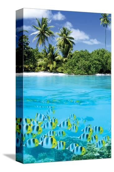 Tropical Scenery II--Stretched Canvas Print