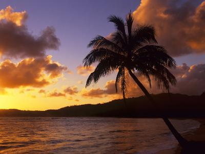 Tropical Sunrise on the Garden Isle, Kauai, Hawaii, USA-Jerry Ginsberg-Photographic Print