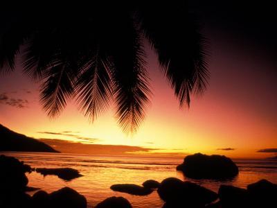 Tropical Sunset on Beauvallon Bay, Seychelles-Nik Wheeler-Photographic Print