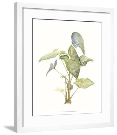 Tropical Watercolor Leaves IV-Megan Meagher-Framed Giclee Print
