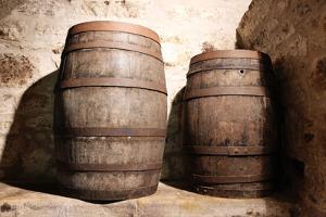 Wood Barrel by trotalo