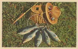 Trout by Creel