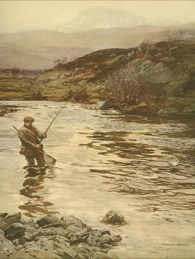 Trout Fishing--Art Print