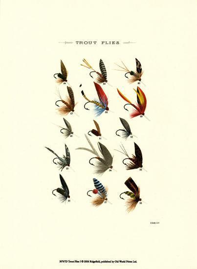Trout Flies I--Art Print