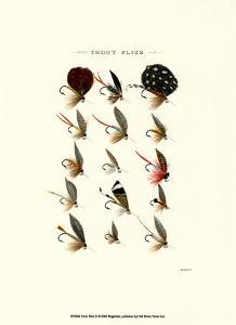 Trout Flies II