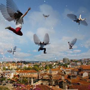Taking Flight, 2009 by Trygve Skogrand