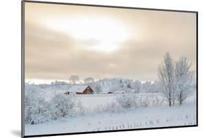 Farm Barn in a Cold Winter Landscape with Snow and Frost by TTphoto