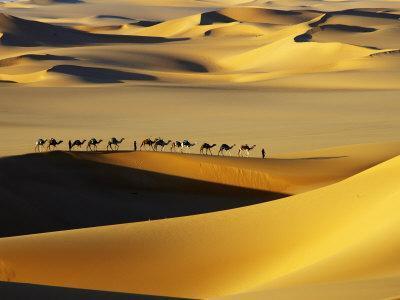 https://imgc.artprintimages.com/img/print/tuareg-nomads-with-camels-in-sand-dunes-of-sahara-desert-arakou_u-l-p5ybmx0.jpg?artPerspective=n