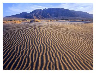 Tucki Mountain and Mesquite Flat Sand Dunes, Death Valley National Park, California-Tim Fitzharris-Art Print