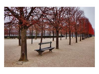 Tuileries Gardens in Winter, Paris, Ile de France, France--Art Print